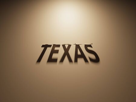 upside down: A 3D Rendering of the Shadow of an upside down text that reads Texas.