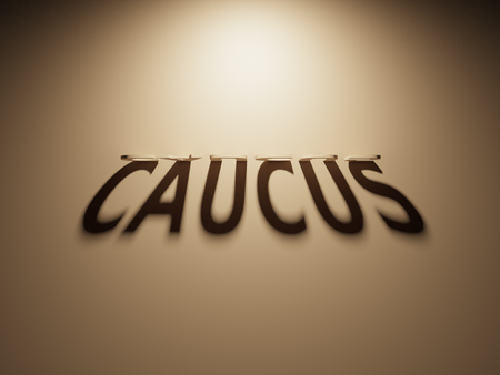 upside: A 3D Rendering of the Shadow of an upside down text that reads Caucus