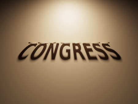 president of the usa: A 3D Rendering of the Shadow of an upside down text that reads Congress.