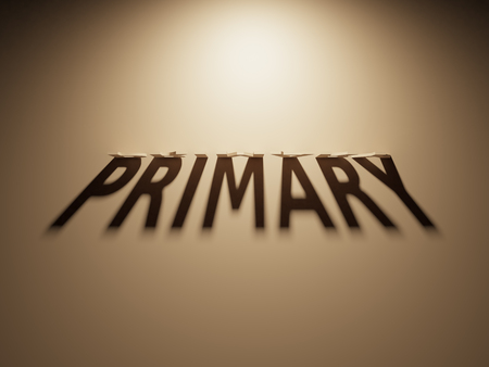 A 3D Rendering of the Shadow of an upside down text that reads Primary.