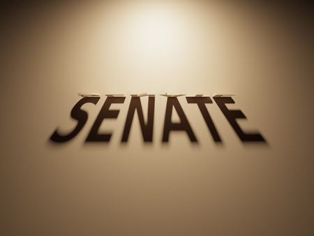 A 3D Rendering of the Shadow of an upside down text that reads Senate.