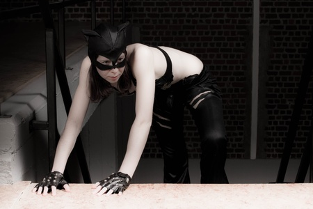 catwoman: catwoman up the stairs Stock Photo