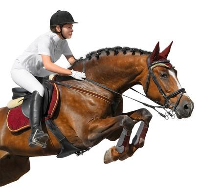 cavallo che salta: Giovane ragazza che saltava con cavallo baia - isolata on white