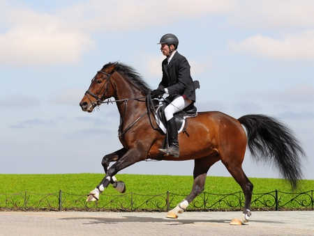 A rider in a show jumping running at full speed
