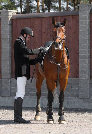 uomo a cavallo: il cavaliere e la baia cavallo