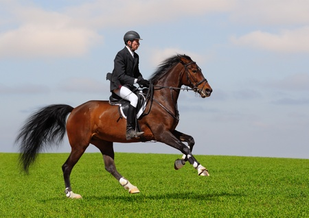 A rider in a show jumping running at full speed photo