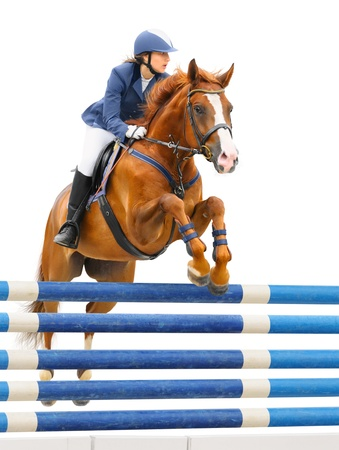 Equestrian sport - show jumping (young woman and sorrel stallion) on white background