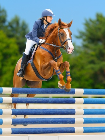 woman horse: Equestrian sport - show jumping (young woman and sorrel stallion) on nature background