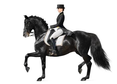 mujer en caballo: El deporte ecuestre - doma (aislado en blanco) Foto de archivo