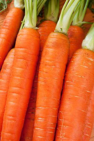 Background of brunch of fresh carott with roots Standard-Bild