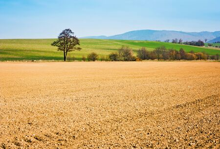 Landscape of fields ready for cultivation, trees and hills in the background Stock Photo