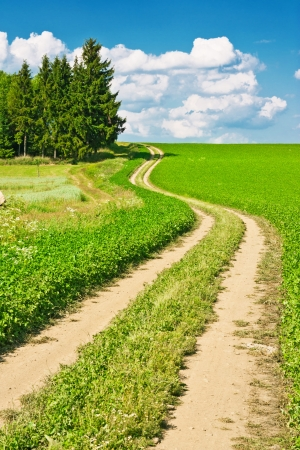 Landscape composed of a winding road, field and cloudy blue sky photo