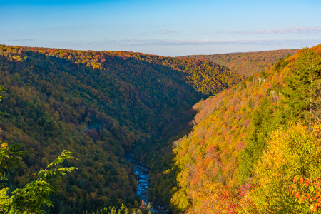 Overlook in Blackwater Falls State Park, West Virginia Stock Photo