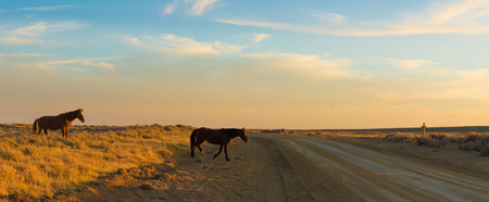 pilot light: Scenic Byway in Wyoming at sunset Stock Photo