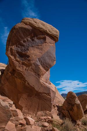 Petroglyphs located in Dinosaur National Monument, Utah