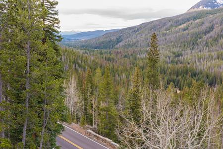 Viewpoint of Trail Ridge Road, Rocky Mountain NP, Colorado