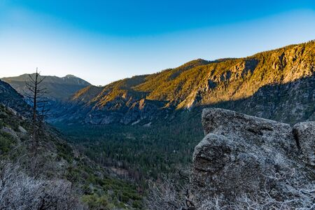 sequoia: Dawn at the valley of Kings Canyon, taken near Cedar Grove