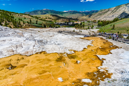 Looking towards the Mammoth Hot Springs township from the terraces