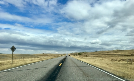 Rural highway in northern Montana with cows crossing the road in the background 写真素材