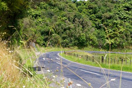 Lonely scenic highway through farmland in Taranaki, New Zealand