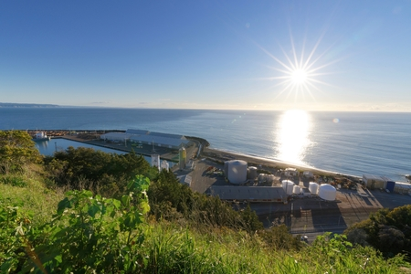 The Port of Napier viewed from Bluff Hill