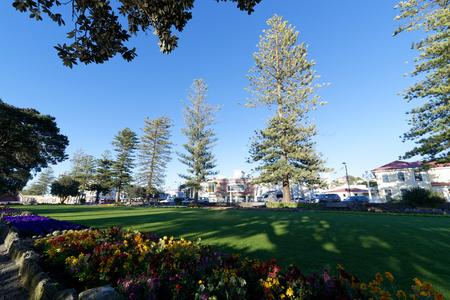 Beachfront domain in the town of Napier, NZ Reklamní fotografie