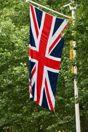 British Union Jack flag flying vertically with trees in the background Reklamní fotografie