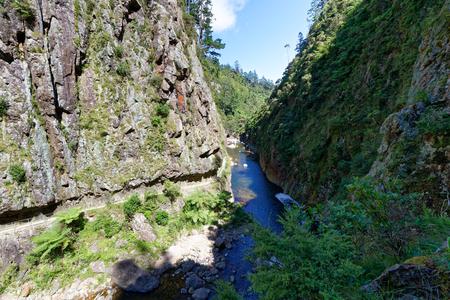 River running through the Karangahake Gorge, a popular attraction in the Waikato