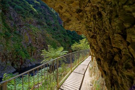 Walking trail through the Karangahake Gorge, Waikato