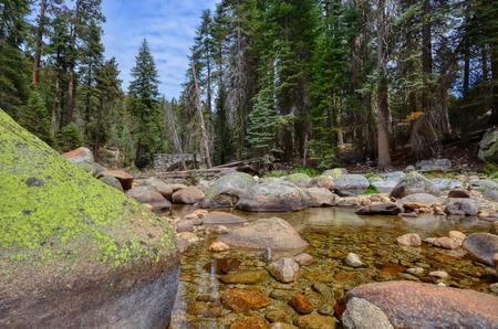 River running through Sequoia National Park, California