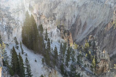 Cliffs along the Grand Canyon of Yellowstone, Yellowstone National Park Banco de Imagens