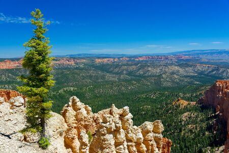 Overlook at Bryce Canyon National Park, Utah