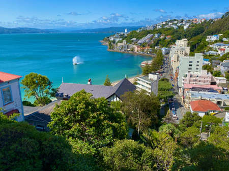 Vista of Wellington, New Zealand, from Mount Victoria