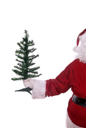 Santa Claus with a small tree in his white gloved hand Stock Photo - 1991131