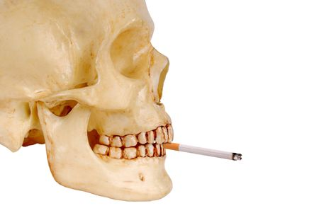 brainpan: skull from the right side with a cigarette in its mouth Stock Photo