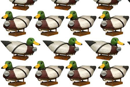 decoy: Hand carved Mallard Drake Decoy Ducks isloated over white