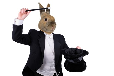 rabbit man dressed as a magician pulling a rabbit from his hat isolated over a white background photo