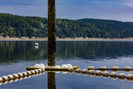 line of bouys on lake tied to pole