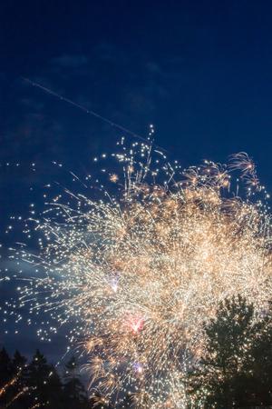 golden fireworks over tree tops 写真素材