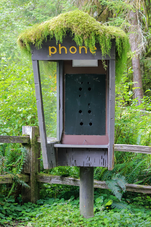 no pay phones in the forest