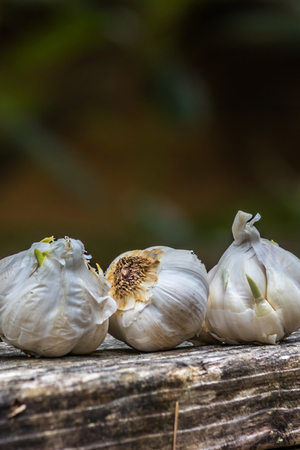 garlic lined up on a banister