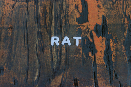 the word rat written in white block letters Stock Photo