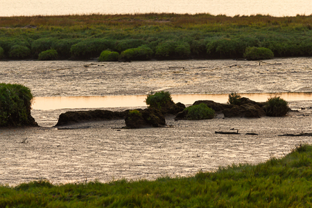 sunset glowing on mudflats and water in august afternoon light
