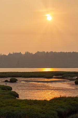 sun beams in a sunset glowing sky above washington wetlands