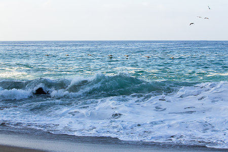 aufgewühlte Welle, die Rückspülung mit Schaum und Schaum durchbricht. Vögel fliegen über das Meer und Möwen in der Luft