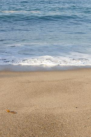 seashore foam crawling up sandy shoreline in california Stok Fotoğraf