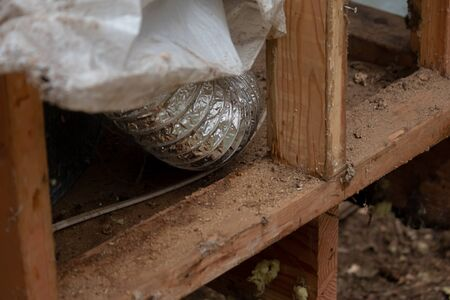 wooden frame work covered in mess and damage from bugs