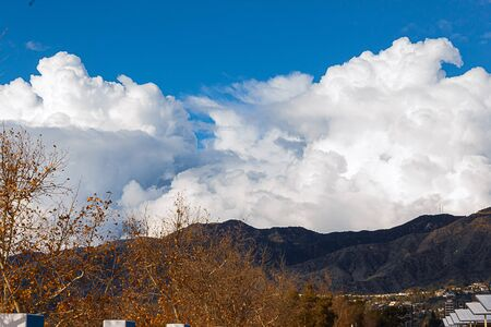 view of san gabriel mountains with tops of sycamore trees with clouds