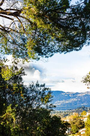 evergreens with panaramic view of sky, city homes, businesses, and mountains Imagens