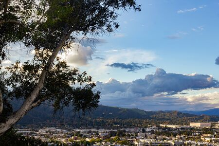 eucaly[tus tree over hanging valley view of city scape with mountain and cloudscape